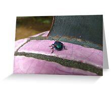 The Metallic Majesty of MarbleBug: Maleny, Queensland, Australia Greeting Card