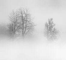 March 2013 by StefaniaC
