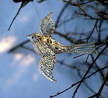 Winter bird by freshairbaloon