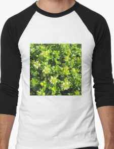 Small flowers in the forest Men's Baseball ¾ T-Shirt