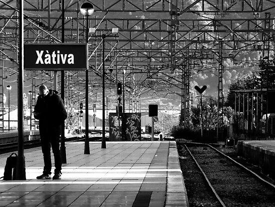 Xativa by Berns