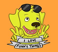 I Love Funny Things! by digimountain