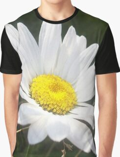 Close Up of a Margarite Daisy Flower Graphic T-Shirt