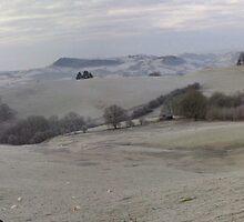 Early Morning Walk on a Very Frosty Day by Jacqueline Longhurst