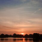 Bushy Park sunset by SteveHphotos