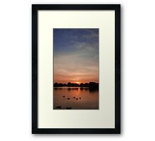 Bushy Park sunset Framed Print