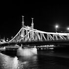 The freedom bridge in Budapest by night in BW by Pavel Gospodinov