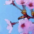 Cherry Blossoms - Blue Sky Floral by Sharon Cummings