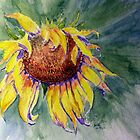 Sunflower Splash by Anne Thigpen