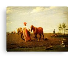 in the ploughed field spring Canvas Print
