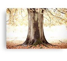 The Tree of Light Canvas Print