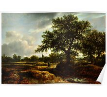 Jacob van Ruisdael   Landscape with a Village in the Distance (1646) Poster