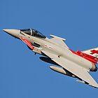 Eurofighter Typhoon ZK315 by Lee Wilson