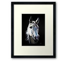 Ghost Rider into the night Framed Print