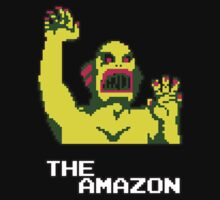 The Amazon by wemarkout