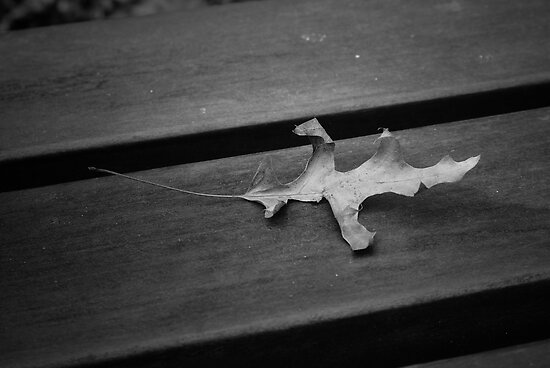 The loney leaf by Drewlar