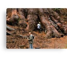 Righteous Roots Canvas Print