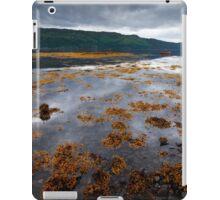 The Red Boat II iPad Case/Skin
