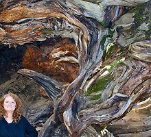 The Color of Redwood by Nina Hofstadler