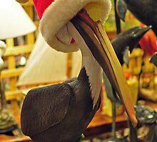 I Hope I've Made the Good Pelican List?  by John  Kapusta