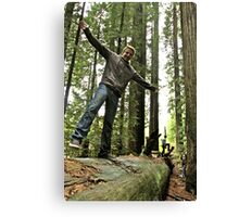 FALLen Tree 2 Canvas Print