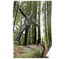 FALLen Tree 2 Poster