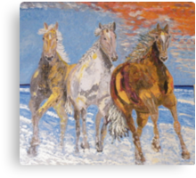 Horses on the Beach Canvas Print