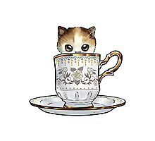 Kitten in a Tea Cup, original colors Calico Kitten floral vines Photographic Print