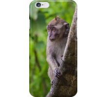 Long Tailed Macaque iPhone Case/Skin