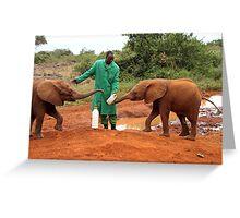 """Just Wait Your Turn"", Baby Elephants, Kenya Greeting Card"