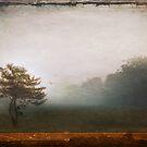 Season Of Mists by Evelina Kremsdorf