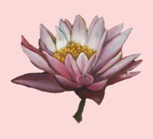 Lotus by Beth Lerman