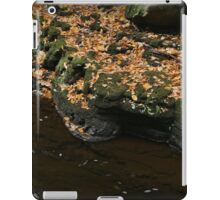 Autumn Bank iPad Case/Skin