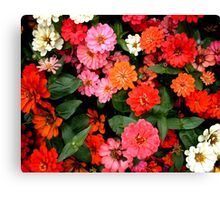 """""""Flowers 1"""" by Chip Fatula Canvas Print"""