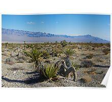 Nevada desert near Las Vegas Poster
