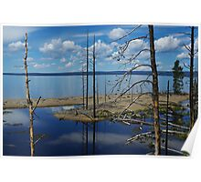 Lake Yellowstone impression Poster