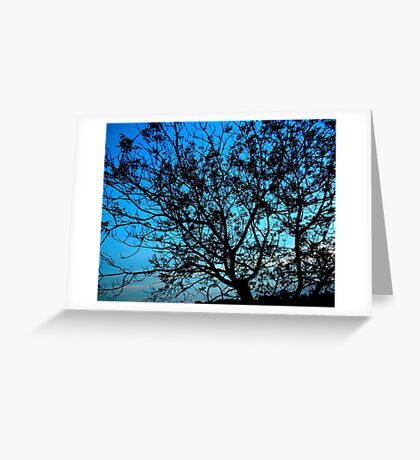 """""""Trees with Blue Sky"""" Greeting Card"""