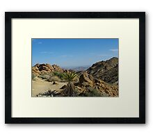 Yuccas, Rocks and Mountains Framed Print