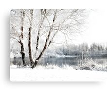 Baby It's Cold Outside... Canvas Print