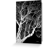 Black and White Tree III Greeting Card