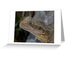 Portrait - Young Water Dragon Lizard Greeting Card
