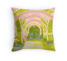 Pink Arches Throw Pillow
