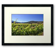 Boyntons Winery Framed Print
