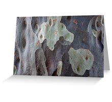 Spotted Gum Detail, Adelaide Hills SA Greeting Card