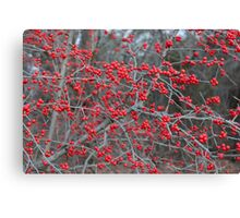 Red Accents Canvas Print