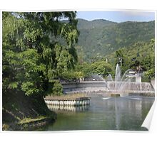 View on river in Japan Poster