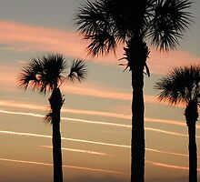Palms with Pink Ribbons by alamarmie
