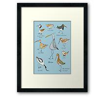 Tidal Estuary Bird Spotters Guide  Framed Print