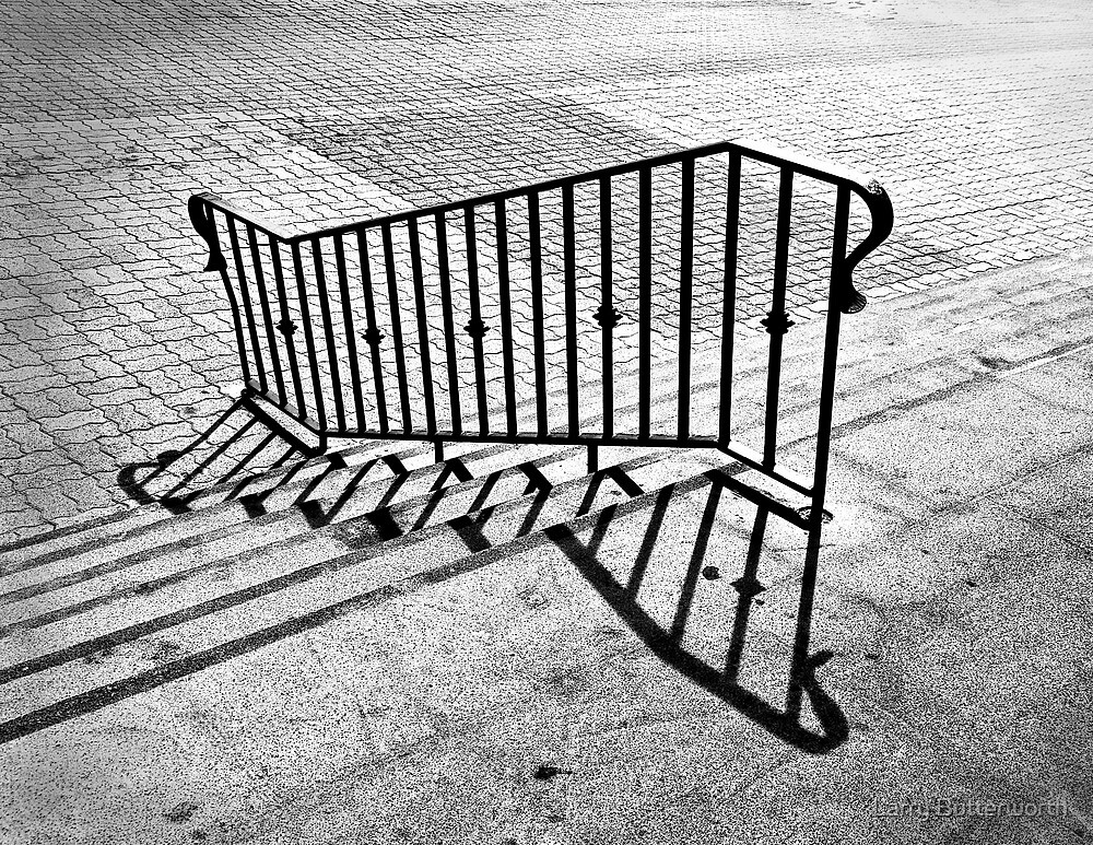 THE RAILING by Larry Butterworth