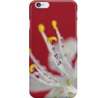 Red Rain iPhone Case/Skin